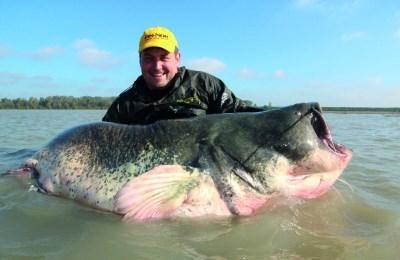 Большой представитель рыбы