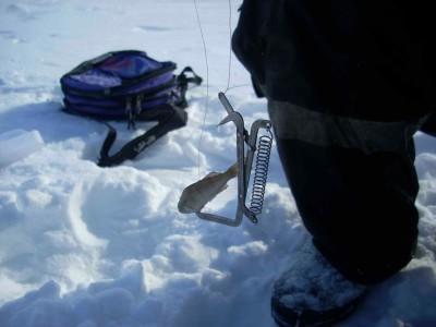 Снасть для зимней рыбалки