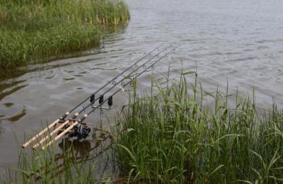 Ловля рыбы на удочку