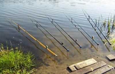 Удочки на рыбу