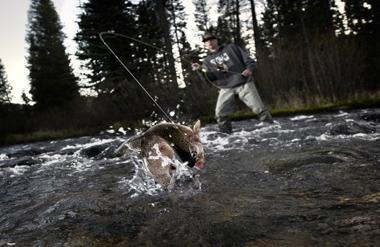 Как ловить нахлыстом