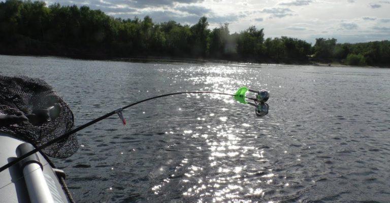 Ловля леща с лодки на кольцо