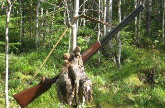 Охота в Карелии