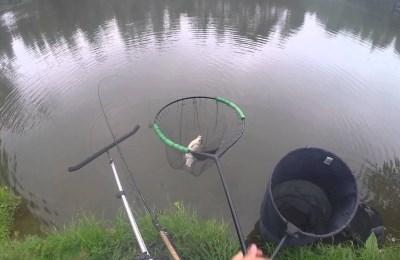 Как правильно поймать рыбу
