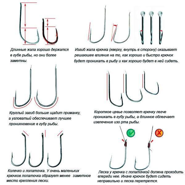 Разновидности формы