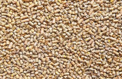 Сухие гранулы